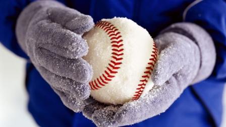 2017 Winter Break Baseball Camp